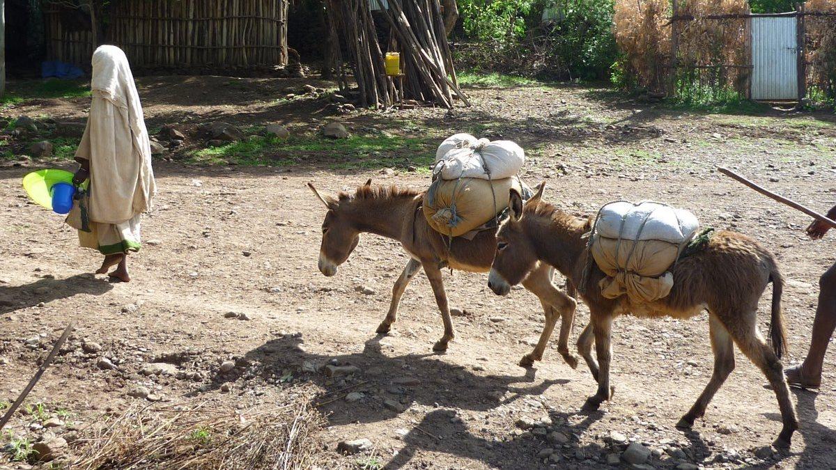 Ethiopie-Nord-04-r