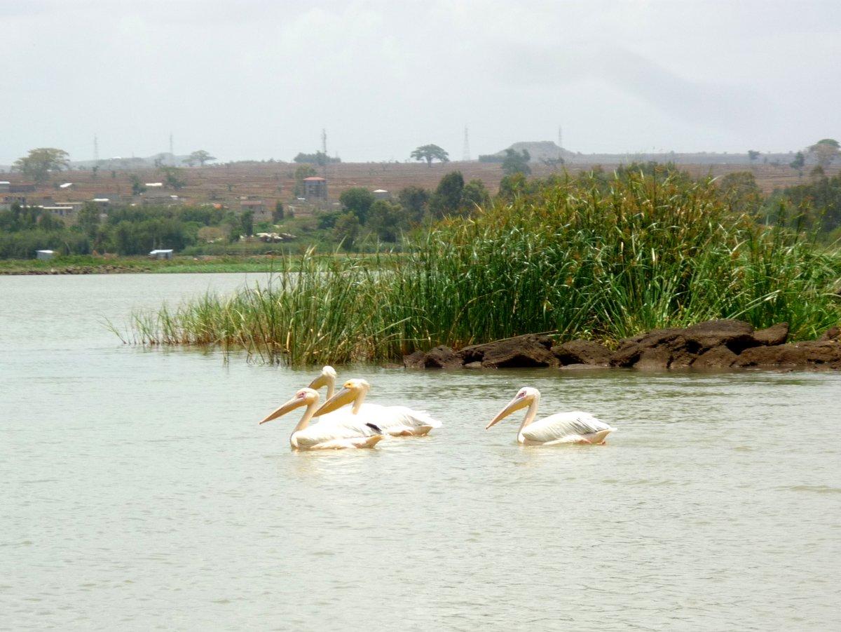 Ethiopie-Nord-08